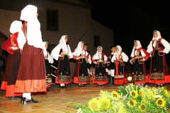 Bosa - www.bosaonline.com